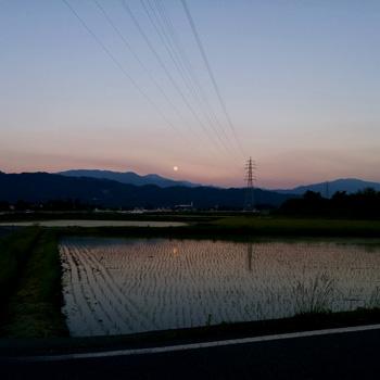 nikki_2016_5_23e
