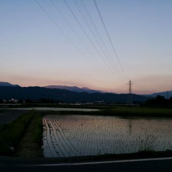 nikki_2016_5_23g